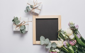 Картинка фон, подарок, Цветы, тюльпаны, бант, Flowers, background, tulips, gift, bow, Эустома, Eustoma