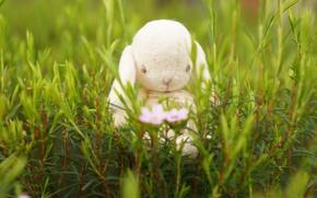 Картинка трава, настроение, игрушка, кролик, зайка