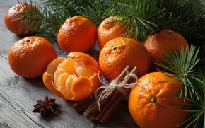 Обои мандарины, звезда, корица, цитрусы, гвоздика