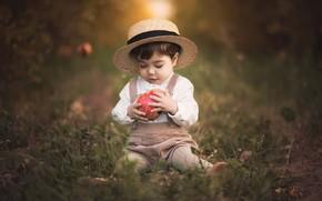 Картинка природа, яблоко, мальчик