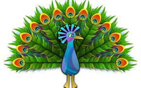 Картинка фон, перья, хвост, павлин, векторная графика