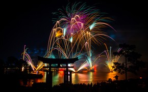 Картинка lights, new year, night, fireworks, Asia, pines, torii