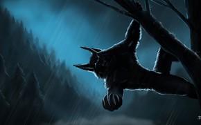 Картинка лес, ночь, дождь, forest, Оборотень, rain, night, werevolf
