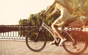 Обои девушка, мост, велосипед, солнце, лето