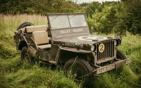 Картинка передок, армейский, Willys MB