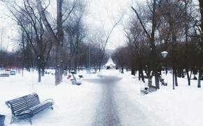 Картинка Зима, Деревья, Снег, Парк, Сквер, Скамейки