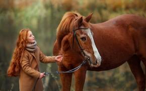 Картинка конь, волосы, лошадь, дружба, девочка, рыжая