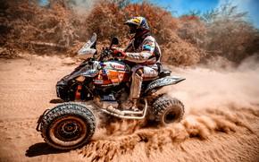 Картинка Скорость, Гонка, Квадроцикл, Гонщик, Мото, Yamaha, Rally, Dakar, Дакар, Ралли, 276