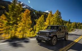 Обои лес, тёмно-серый, Jeep, разметка, 2018, деревья, движение, дорога, Wrangler Sahara, обочина, горы, небо