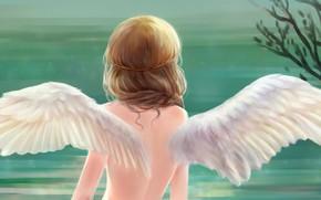 Картинка девушка, спина, крылья, ангел, арт, pai yu