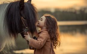 Картинка лошадь, дружба, девочка