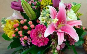 Обои цветы, корзина, лилии, букет, герберы