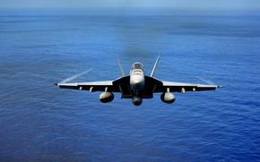 Картинка Hornet, палубный истребитель-бомбардировщик, McDonnell Douglas, FA-18
