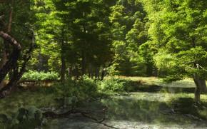 Картинка лес, река, Odenwald