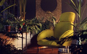Картинка цветы, мебель, интерьер, помещение, Tropics of yore