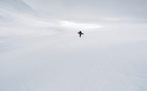 Обои зима, лыжник, человек, снег, природа