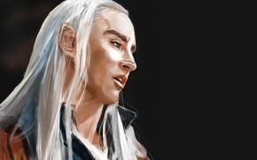 Картинка эльф, король, трандуил