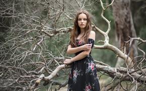 Картинка лес, девушка, Clàudia Seguí