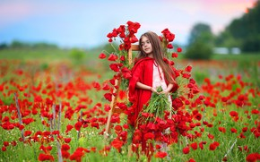 Картинка цветы, природа, маки, девочка
