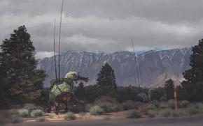 Картинка дорога, деревья, горы, mules