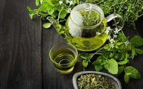 Картинка green, напиток, cup, заварник, мелисса, tea, зеленый чай