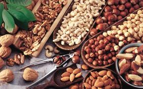Картинка орехи, миндаль, фундук, ассорти, кешью, бразильский, грецкий