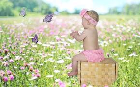 Картинка бабочки, Девочка, ящик, малышка