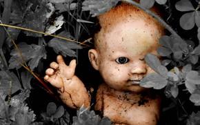 Картинка фон, цвет, кукла, натурализм