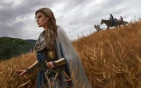 Картинка лес, небо, девушка, оружие, лошадь, Поле, меч, доспехи, воин, Gal Or