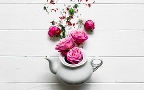 Картинка цветы, розы, розовые, pink, flowers, beautiful, spring, roses, teapot