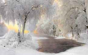Картинка зима, иней, снег, Финляндия, Кухмо