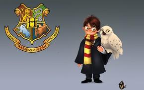 Картинка арт, Гарри Поттер, детская, полярная сова, Vipin Jacob, Букля, Harry and Hedwig, Hedwig, Хедвиг