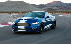 Картинка Shelby, гоночный трек, Super Shake