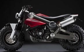 Обои байк, мотоцикл, Brutus, bike