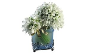 Картинка фон, подснежники, ваза