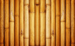 Обои Pattern, wall, bamboo
