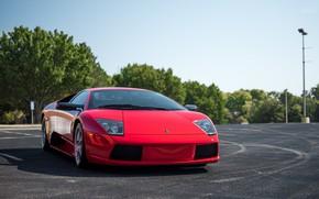 Картинка Lamborghini, Red, Murcielago