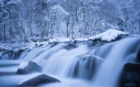 Картинка холод, зима, иней, лес, вода, снег, ветки, природа, камни, берег, зимний, водопад, лёд, поток, валуны, …
