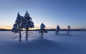 Картинка зима, снег, утро, Finland, Lapland
