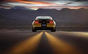 Обои Ford, Mustang, закат, небо, Shelby Terlingua, вечер, дорога, вид сзади, горы