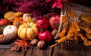 Картинка листья, тыква, орехи, гранат, осенние дары