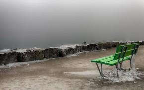 Картинка туман, птица, берег, скамья