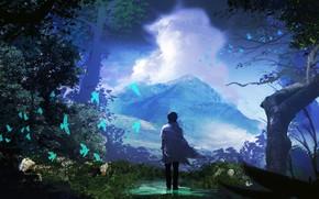 Картинка небо, птицы, природа, парень