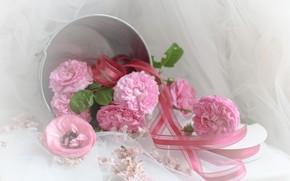 Картинка цветы, букет, ведро, лента