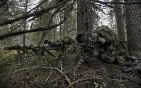 Обои лес, снайпер, камуфляж, винтовка, напарник