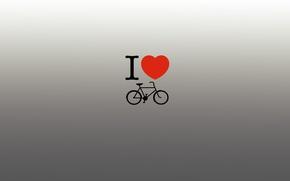 Картинка руль, я люблю, heart, herz, шрифт, серый фон, любовь, scumbria, байк, gray background, надпись, педали, ...