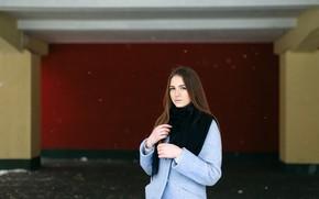 Картинка девушка, фон, милашка, пальто