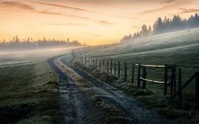 Обои дорога, туман, природа, поле, забор, утро