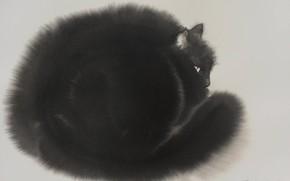 Картинка серый фон, живопись, Endre Penovac, черный котяра, акварель по-мокрому, черно-белый рисунок, пушистая шерстка