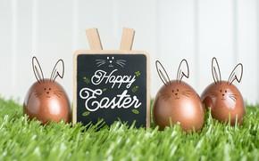 Картинка яйца, пасха, доска, травка, Праздник